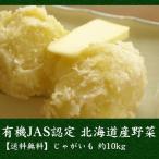 有機JAS認定 北海道産 じゃがいも (品種は時期により異なります)約10kg[送料無料][産地直送]