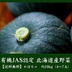 有機JAS認定 北海道産 かぼちゃ 約10kg(4?7玉) 送料無料 産地直送