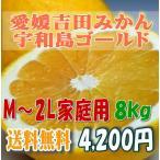 其它 - 宇和島ゴールド 河内晩柑 美生柑 愛媛 吉田産 家庭用8キロ・M〜2L