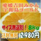 其它 - 宇和島ゴールド 河内晩柑 美生柑 愛媛 吉田産 家庭用8キロ・サイズ無選別