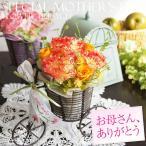 アイアン製の三輪車の器にプリザーブドフラワーのカーネーションとバラをアレンジしました。 春らしく華や...