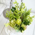 Yahoo!お花を贈るなら サンクスブーケインテリアグリーン 枯れない観葉植物 プリザーブドフラワー  ラ・ナチュール 誕生日 記念日 父の日 男性 新築祝い プレゼント おしゃれなギフト 贈り物