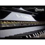 acoustic samples / B-Pian【オンライン納品】【FOMIS】