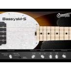 acoustic samples / Bassysm-S【オンライン納品】【FOMIS】