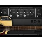 acoustic samples / GD-6 Acoustic Guitar【オンライン納品】【FOMIS】