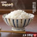 令和元年産 農薬・化学肥料不使用ゆきひかり玄米10kg【送料無料・数量限定品】