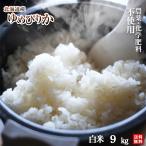 令和元年度・北海道産 農薬・化学肥料不使用ゆめぴりか白米9kg【送料無料・数量限定品】