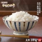 令和2年北海道産 農薬・化学肥料不使用ゆきひかり玄米10kg【送料無料・数量限定品】