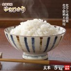 令和2年北海道産 農薬・化学肥料不使用ゆきひかり玄米5kg【送料無料・数量限定品】