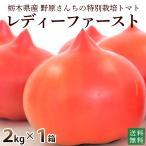 産地直送 新鮮トマト(ファースト)2kg送料無料 無化学肥料 農薬7割減の特別栽培 野原農園