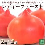 産地直送 新鮮トマト(レディファースト)たっぷり4kg【送料無料 無化学肥料 農薬7割減の特別栽培 野原農園】