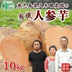 有機さつまいも にんじん芋10kg 鹿児島県産 有機JAS オーガニック【送料無料】