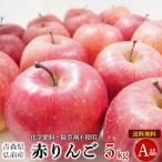 青森県産 自然農法特別栽培 赤りんご A品 5kg【送料無料】