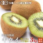 有機JASキウイフルーツ(Mサイズ以上混合)3kg神奈川県小田原産【送料無料】