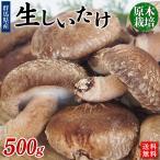 群馬県原木栽培「生しいたけ」500g【送料無料】