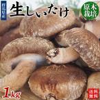 群馬県原木栽培「生しいたけ」1kg【送料無料】