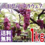 稲泉農園・山形県産デラウェアぶどう1kg(6房前後)