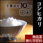 千葉県産、無農薬・無化学肥料栽培のコシヒカリ。 「無農薬玄米・10kg」