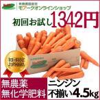 ジュース用ニンジン 無農薬、無化学肥料栽培 「お試し!ジュース用ニンジン・4.5kg 」