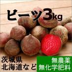 ビーツ、無農薬。飲む血液、と言われる栄養満点の野菜。 「ビーツ・3kg8個〜15個程度」