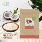 有機JAS認定 オーガニック ココナッツフラワー大容量 500g  スリランカ産 無添加 無漂白 粉末 お徳用 低GI ココナツ 椰子の実 送料無料