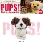 ぬいぐるみ 犬 シーズー   Sサイズ PUPS! パプス 【P