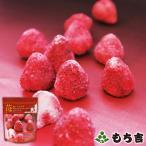 (※期日指定1月31日まで)苺deショコラ 袋入り