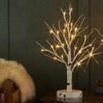 ブランチツリー LED シラカバツリーライト ミニ USB付き クリスマスツリー おしゃれ イルミネーション LED 枝ツリー あすつく対応商品