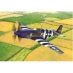 """アカデミー 1/48  USAAF P-51B """"ノルマンディー上陸作戦70周年セット""""(限定品)【12303】"""