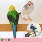パラキートクリップ PARAKEET CLIP バード セキセイインコ 小鳥 文房具 文具 おもしろ雑貨 リアル オブジェ