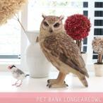 ペットバンク PET BANK トラフズク LONGEAREDOWL 1099 貯金箱 動物 置き物 置物 500円玉 フィギュア リアル