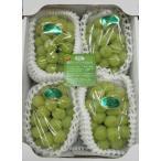シャインマスカット【優品】3〜6房(約2kg) 岡山特産糖度が高くて種がなく皮ごと食べられるのが特徴の葡萄です