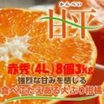 みかん 甘平 【赤秀】4L(8個)3kg JAえひめオリジナル品種 (化粧箱入り、13度以上)