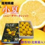 みかん 小夏(ニューサマーオレンジ) L〜2L(約5kg)高知産 【上物・贈答ギフト(化粧箱入り)】贈答用 ギフト 御礼 御祝 誕生日
