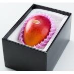 ★完熟マンゴー B品 3L(450g以上×1個) 「情熱みやざきブランド!」  ★発送は5月上旬から★