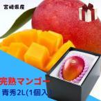 完熟マンゴー 【青秀】 2L(350g以上×1個) 「情熱みやざきブランド!」 ★発送は5月上旬から★