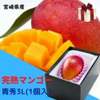 完熟マンゴー 【青秀】 3L(450g以上×1個) 「情熱みやざきブランド!」  ★発送は5月上旬から★