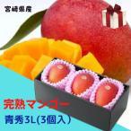 完熟マンゴー 【青秀】 3L(約350g以上×3個) 「情熱みやざきブランド!」  ★発送は5月上旬から★