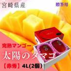 完熟マンゴー【太陽のタマゴ】 赤秀 4L(約510g以上×2個) (糖度15度以上) JA宮崎 (予約販売・発送は5月中旬から)