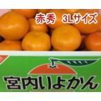 みかん 伊予柑(いよかん)赤秀 3Lサイズ 9kg 愛媛県産 ふるさと物産品