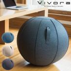 バランスボール 65cm カバー付き 空気入れ付き おしゃれ 椅子 スツール 北欧 ヴィヴォラ ビボラ Vivora シーティングボール ルーノ シェニール
