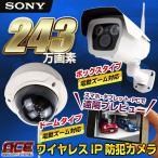 防犯カメラ 監視カメラ SONY 243万画素 電動「4倍ズーム」対応 定時メール AP機能で簡単設定 屋内・屋外用 IPカメラ ワイヤレス WiFi