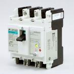 一般配線用漏電遮断器 G-TWINシリーズ スタンダード品 経済形 富士電機 EW100AAG-3P100B 4B