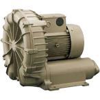リングブロー VFZ 三相標準形 テラル(旧富士電機) VFZ901A