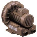 リングブロー VFZ 三相低騒音形 テラル(旧富士電機) VFZ301AN