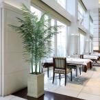 光触媒 観葉植物(人工観葉植物)光の楽園 トロピカルアレカパーム 2.0m