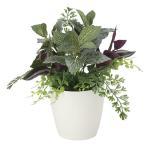 Yahoo!光の楽園ショップ モントブレッテ光触媒観葉植物テーブルタイプ(人工植物) ミックスグリーンS、新商品