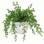 光触媒観葉植物テーブルタイプ 人工多肉植物 グリーンネックレス