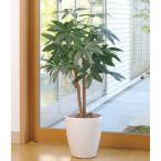 光の楽園(光触媒人工植物 テーブルタイプ) パキラ90cm