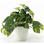光触媒観葉植物テーブルタイプ(人工植物) フレッシュポトスS